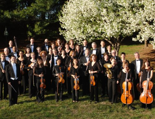 Amadeus Orchestra to feature NVMTA Concerto Winners